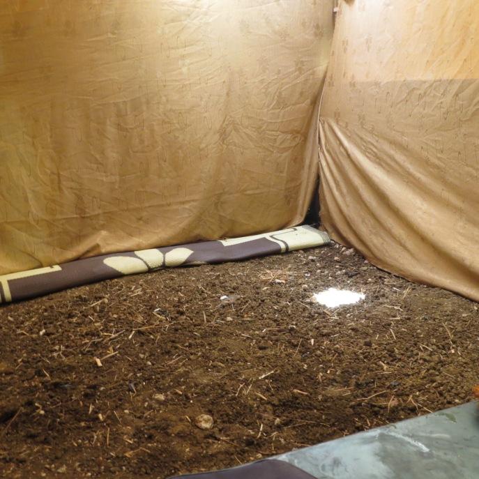 Vorbereitung für neuen Zeltböden